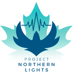 https://www.bigsteelbox.com/content/uploads/2020/01/Project-Northern-lights-1.png